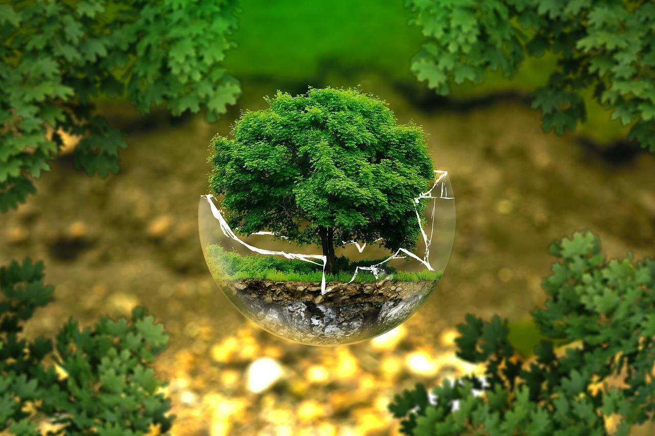 razmišljaj ekologično